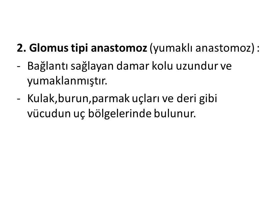 2. Glomus tipi anastomoz (yumaklı anastomoz) :