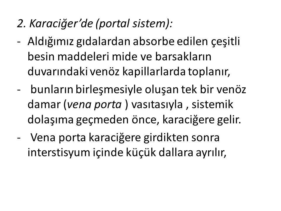 2. Karaciğer'de (portal sistem):