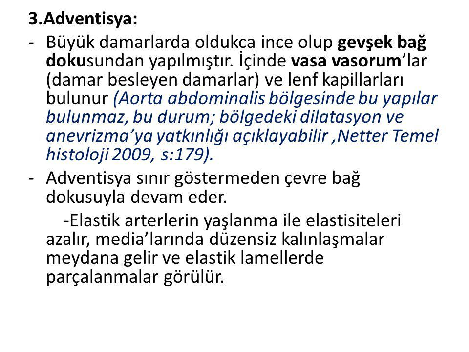 3.Adventisya: