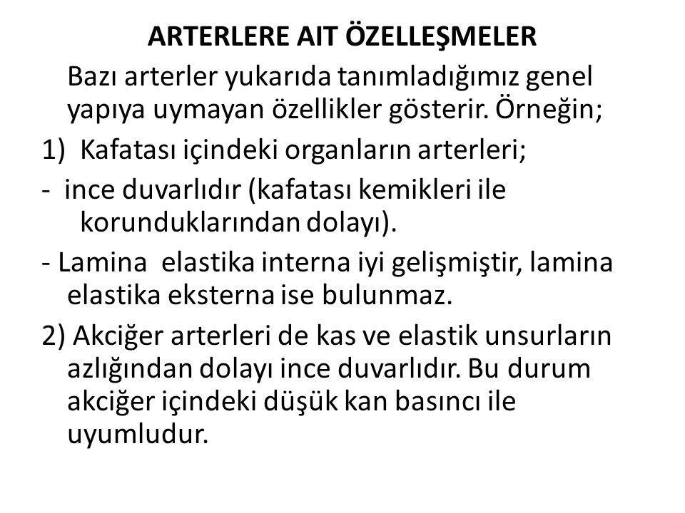 ARTERLERE AIT ÖZELLEŞMELER