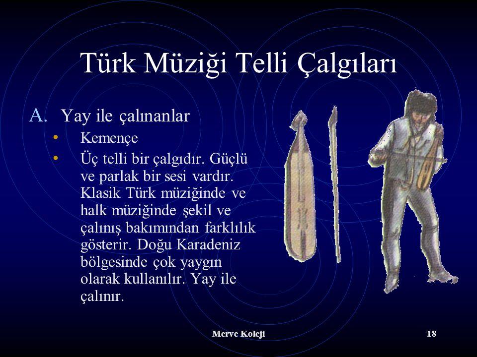 Türk Müziği Telli Çalgıları