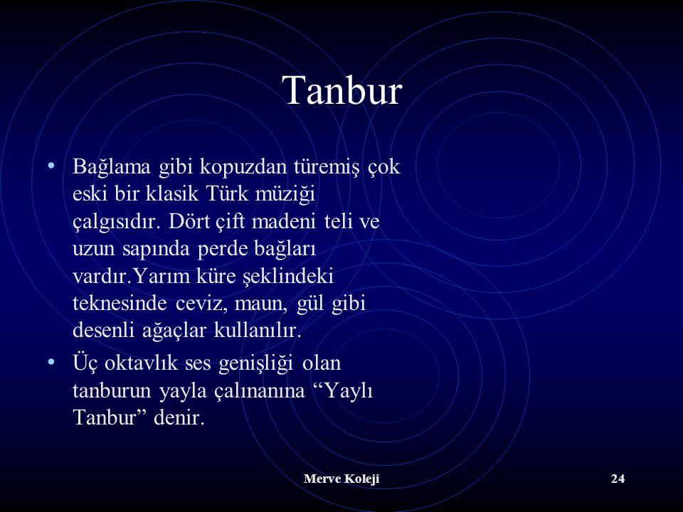 Tanbur