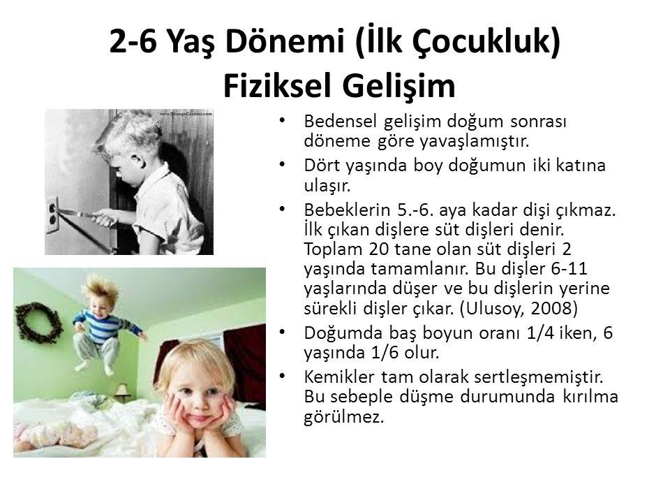 2-6 Yaş Dönemi (İlk Çocukluk) Fiziksel Gelişim