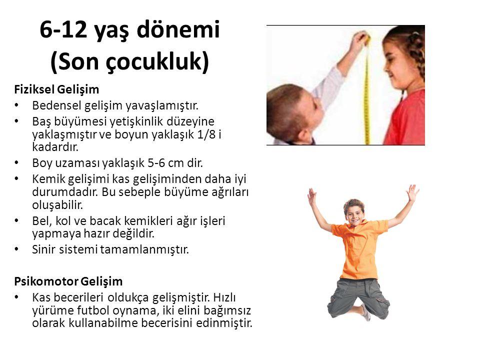 6-12 yaş dönemi (Son çocukluk)