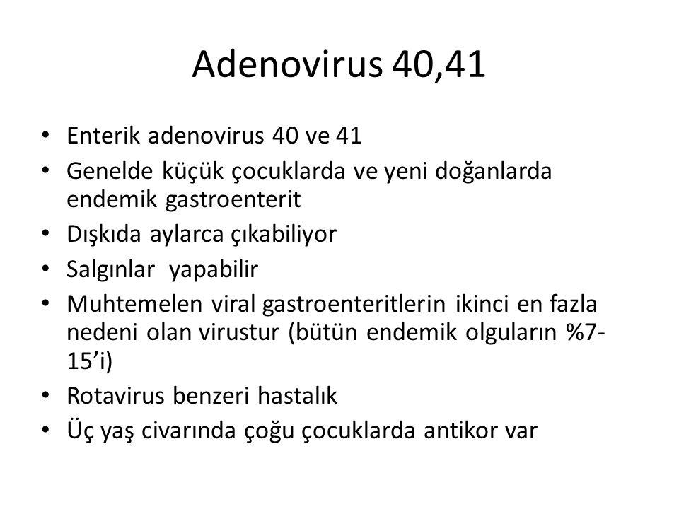 Adenovirus 40,41 Enterik adenovirus 40 ve 41