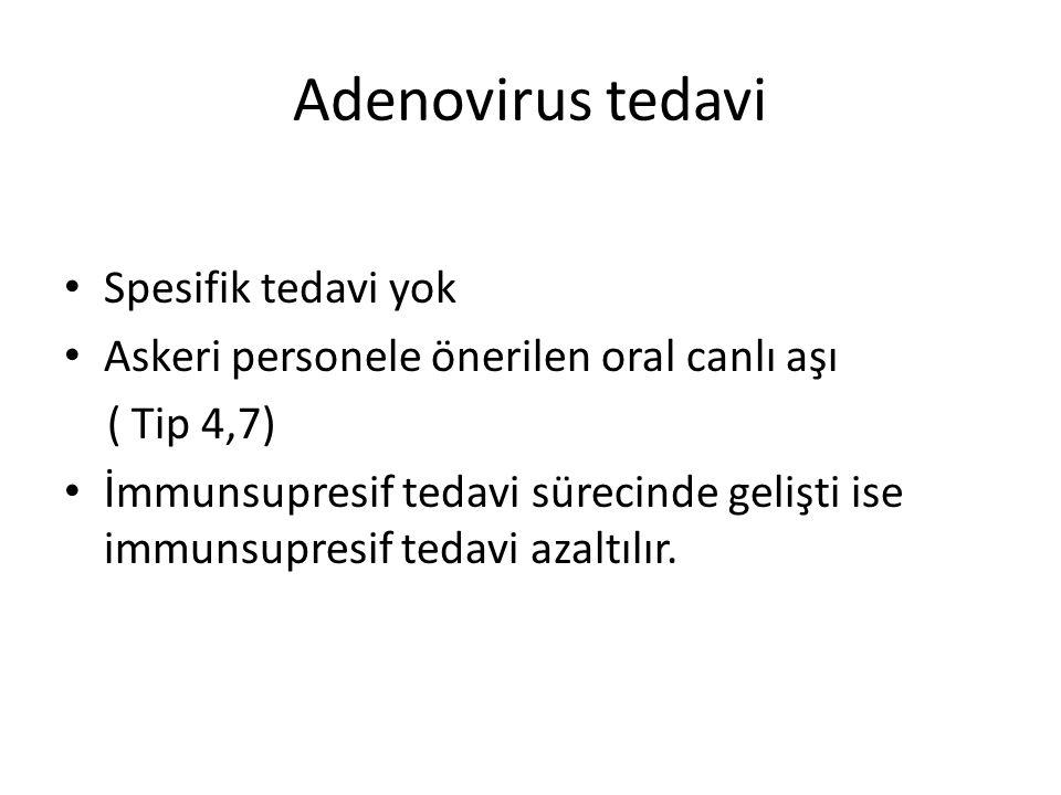 Adenovirus tedavi Spesifik tedavi yok
