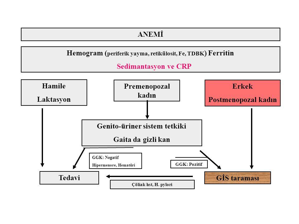 Genito-üriner sistem tetkiki