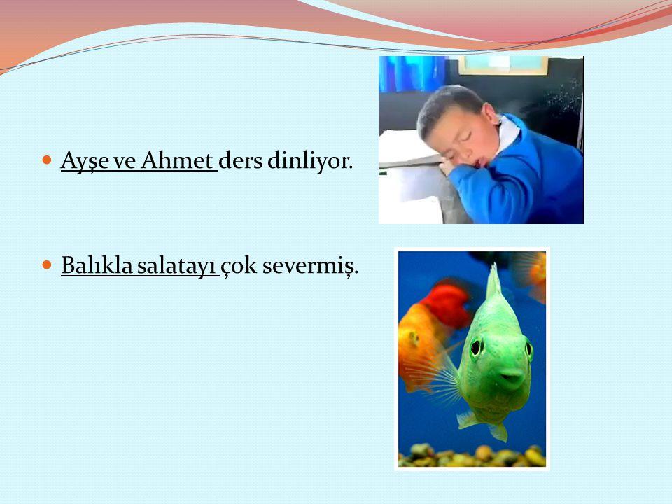 Ayşe ve Ahmet ders dinliyor.