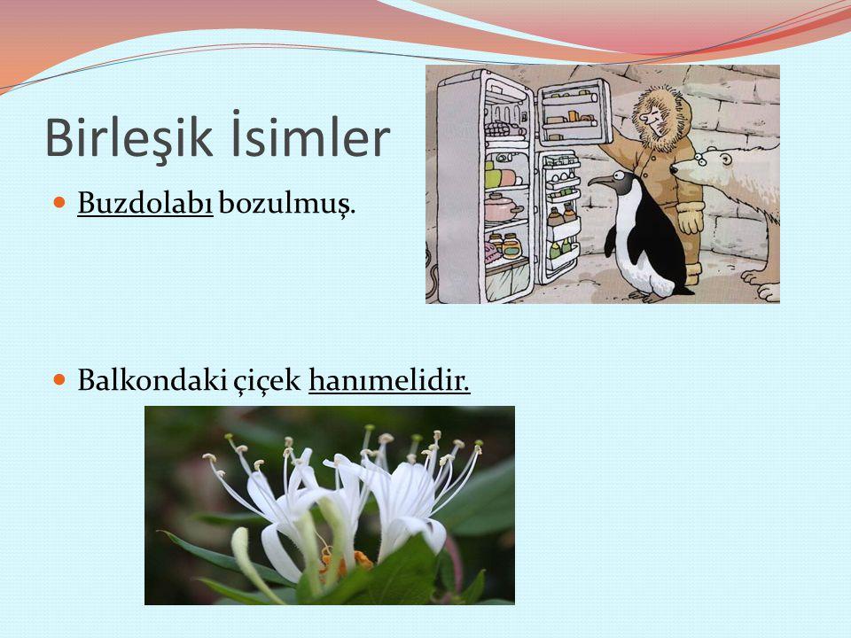 Birleşik İsimler Buzdolabı bozulmuş. Balkondaki çiçek hanımelidir.