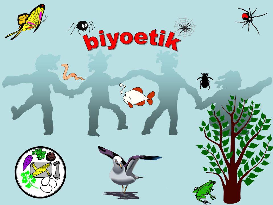 biyoetik