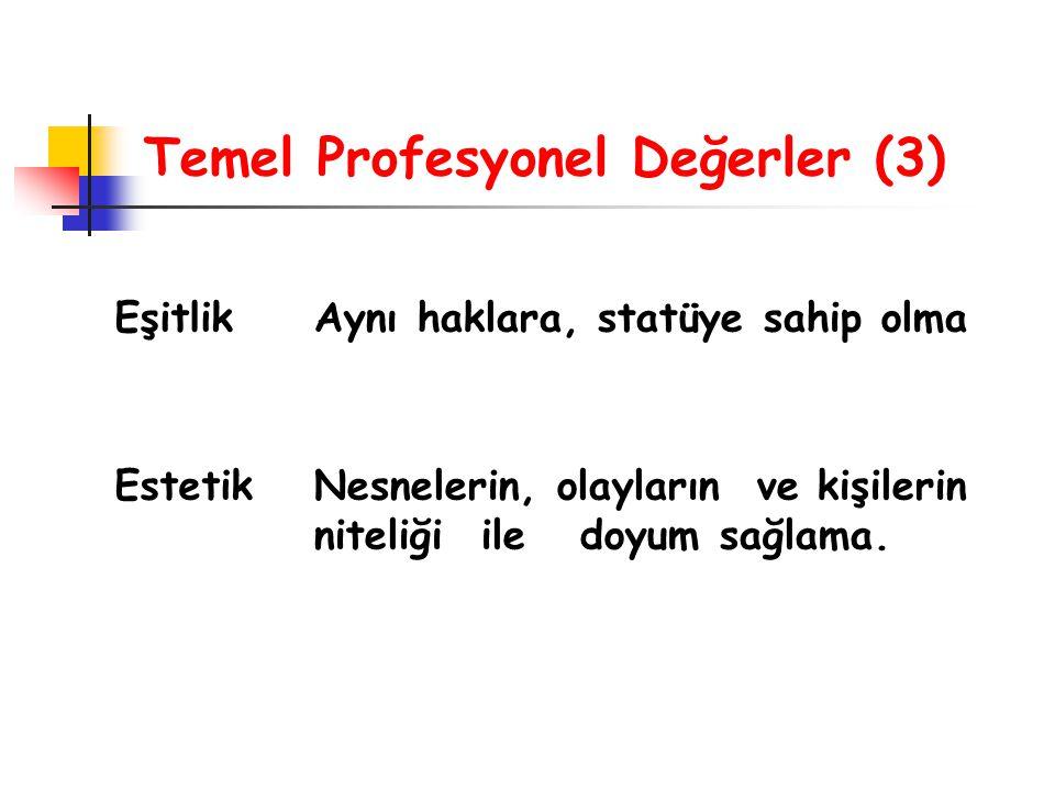 Temel Profesyonel Değerler (3)