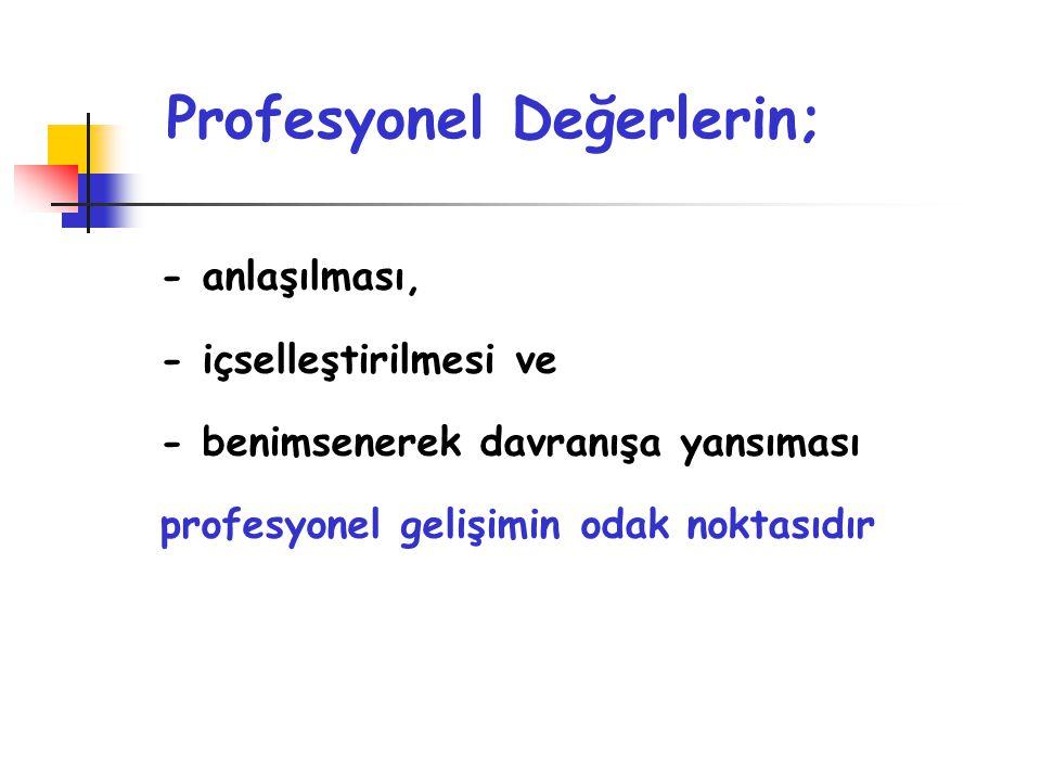 Profesyonel Değerlerin;