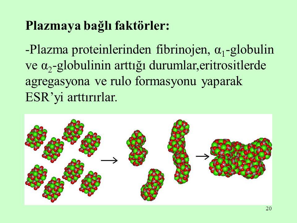 Plazmaya bağlı faktörler: