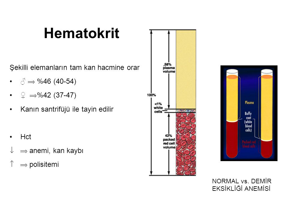 Hematokrit Şekilli elemanların tam kan hacmine oranı ♂  %46 (40-54)