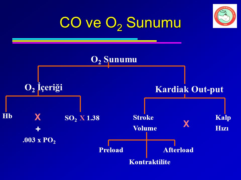 CO ve O2 Sunumu O2 Sunumu O2 İçeriği Kardiak Out-put X X + Hb