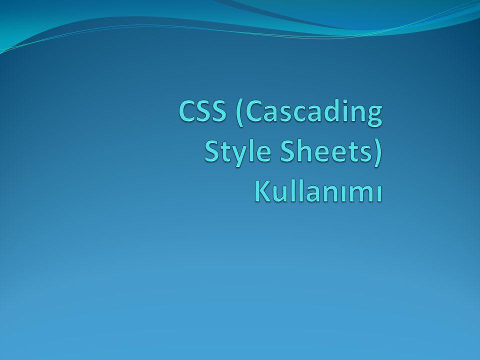 CSS (Cascading Style Sheets) Kullanımı