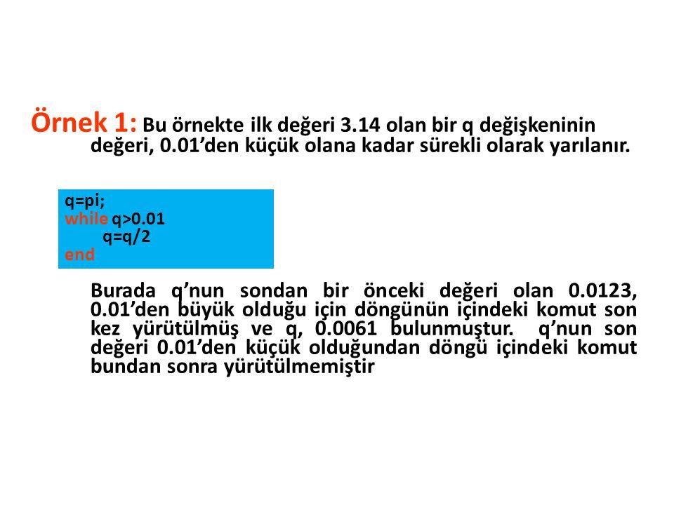 Örnek 1: Bu örnekte ilk değeri 3. 14 olan bir q değişkeninin değeri, 0