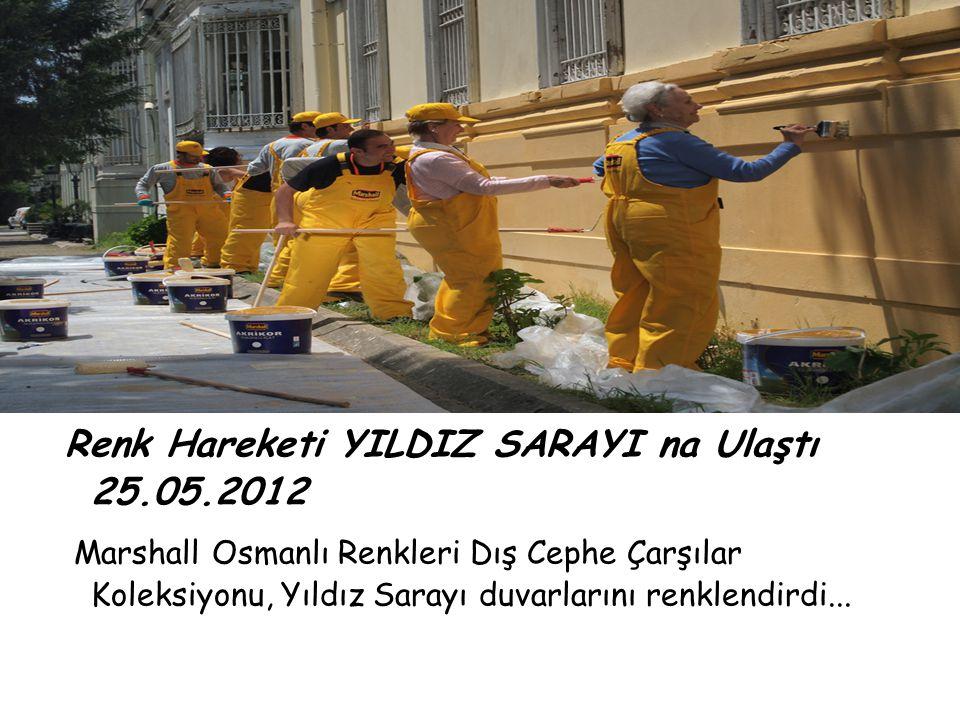 Renk Hareketi YILDIZ SARAYI na Ulaştı 25.05.2012