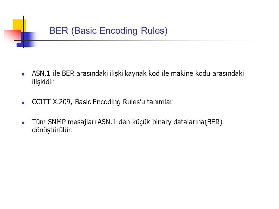 BER (Basic Encoding Rules)