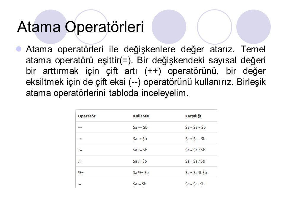 Atama Operatörleri