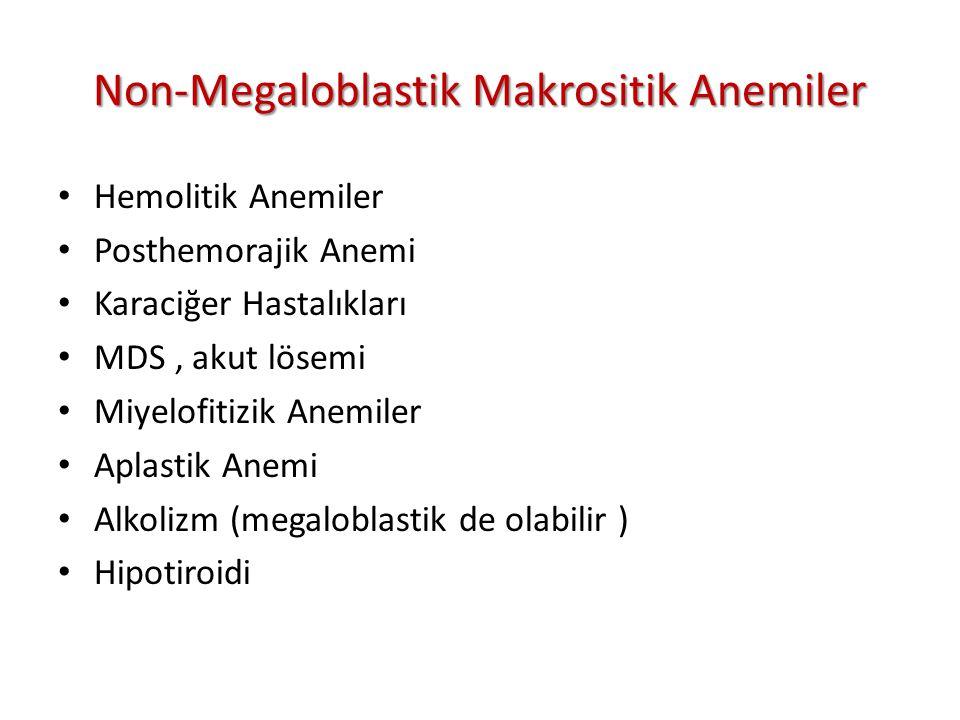Non-Megaloblastik Makrositik Anemiler