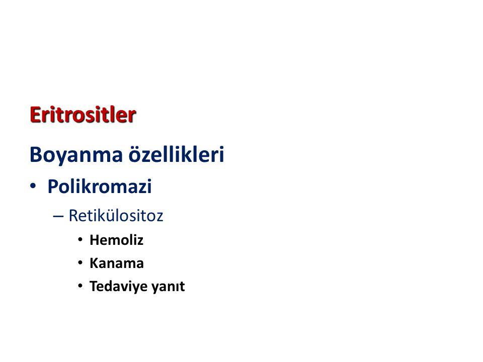 Eritrositler Boyanma özellikleri Polikromazi Retikülositoz Hemoliz