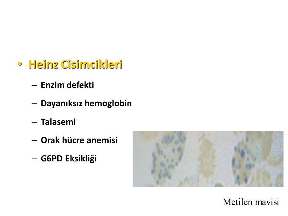 Heinz Cisimcikleri Enzim defekti Dayanıksız hemoglobin Talasemi
