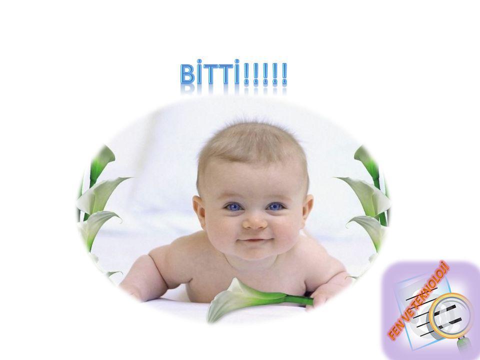 BİTTİ!!!!!