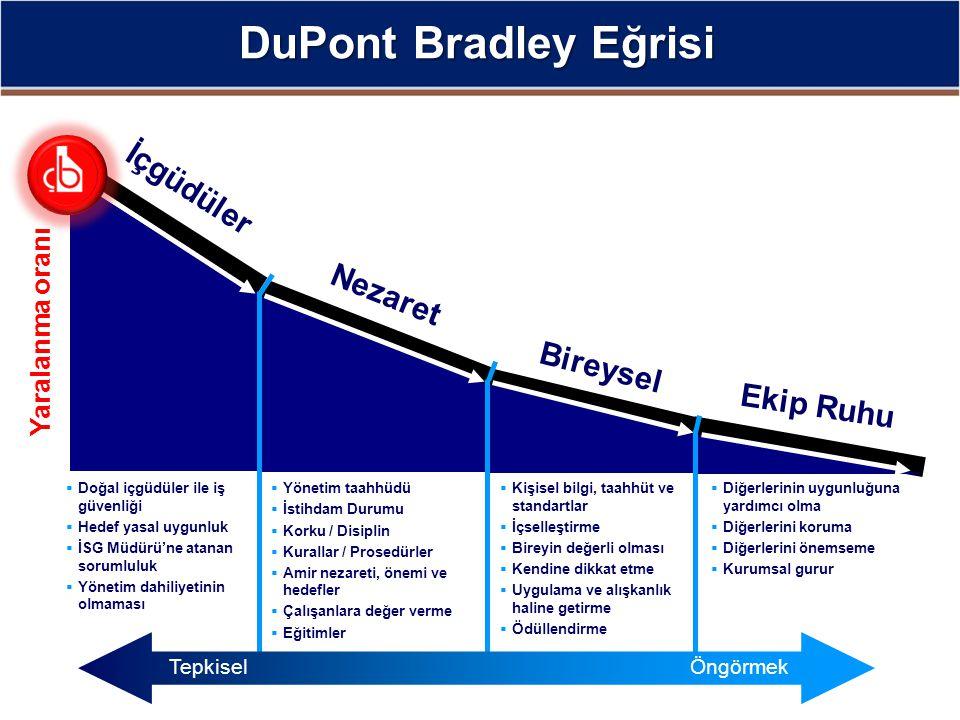 DuPont Bradley Eğrisi İçgüdüler Nezaret Bireysel Ekip Ruhu