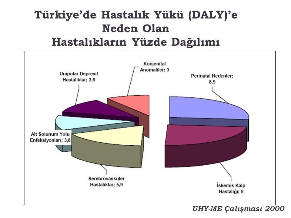 Türkiye'de Hastalık Yükü (DALY)'e Neden Olan Hastalıkların Yüzde Dağılımı
