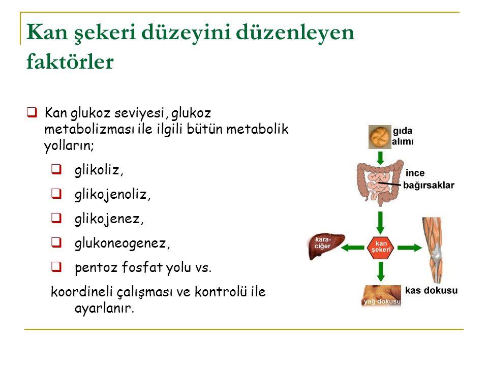 Kan şekeri düzeyini düzenleyen faktörler
