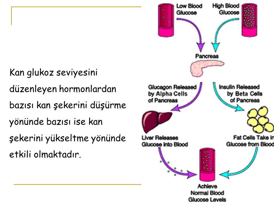 Kan glukoz seviyesini düzenleyen hormonlardan bazısı kan şekerini düşürme yönünde bazısı ise kan şekerini yükseltme yönünde etkili olmaktadır.