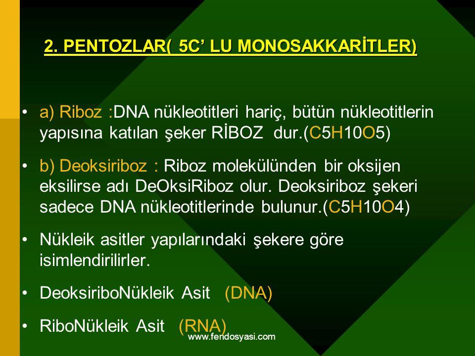 2. PENTOZLAR( 5C' LU MONOSAKKARİTLER)