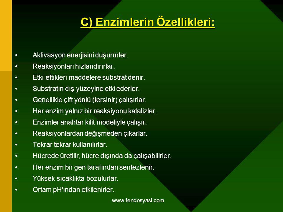 C) Enzimlerin Özellikleri: