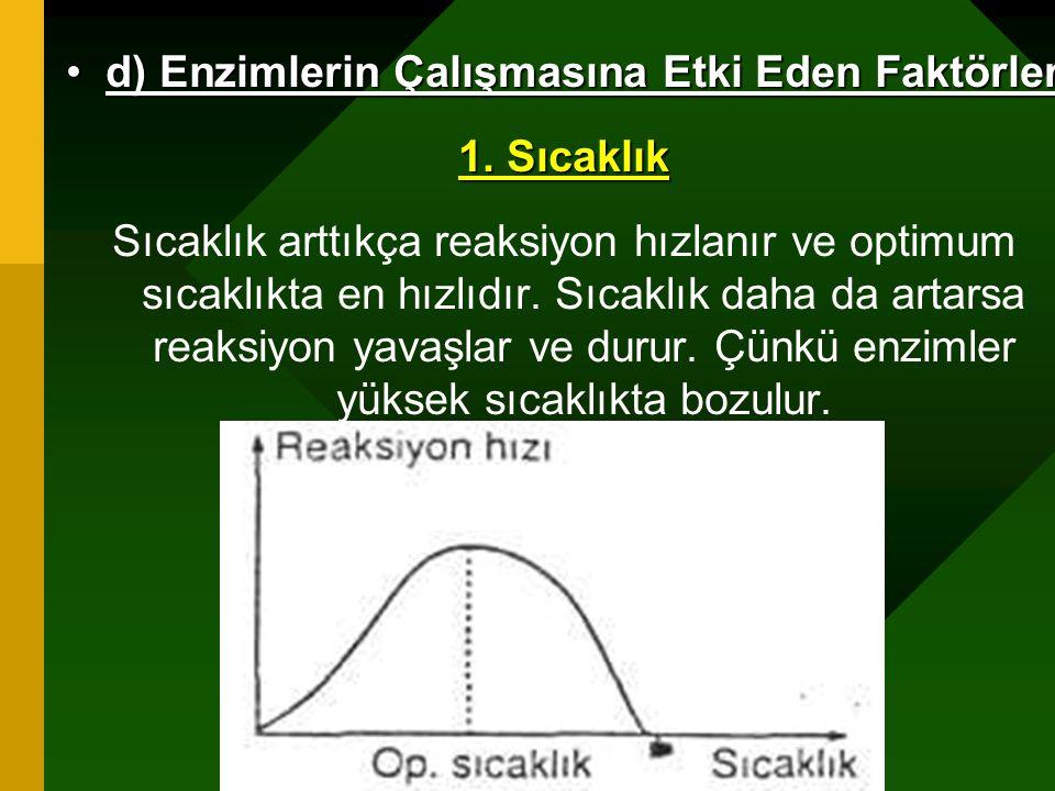 d) Enzimlerin Çalışmasına Etki Eden Faktörler