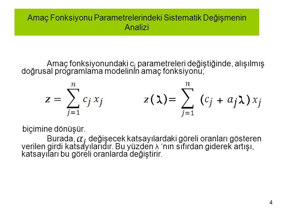 Amaç Fonksiyonu Parametrelerindeki Sistematik Değişmenin Analizi