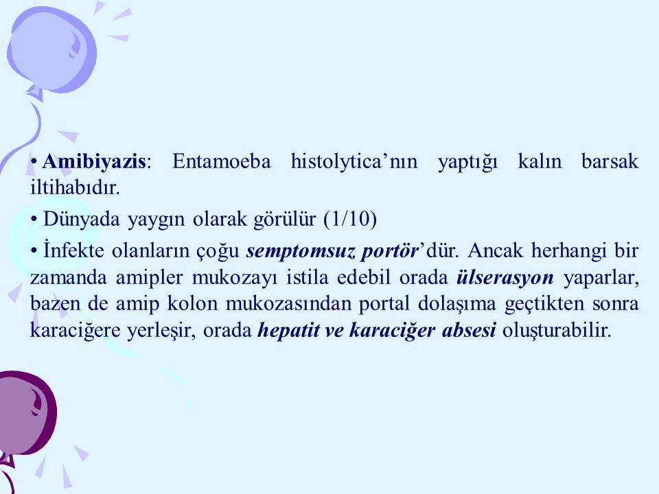 Amibiyazis: Entamoeba histolytica'nın yaptığı kalın barsak iltihabıdır.