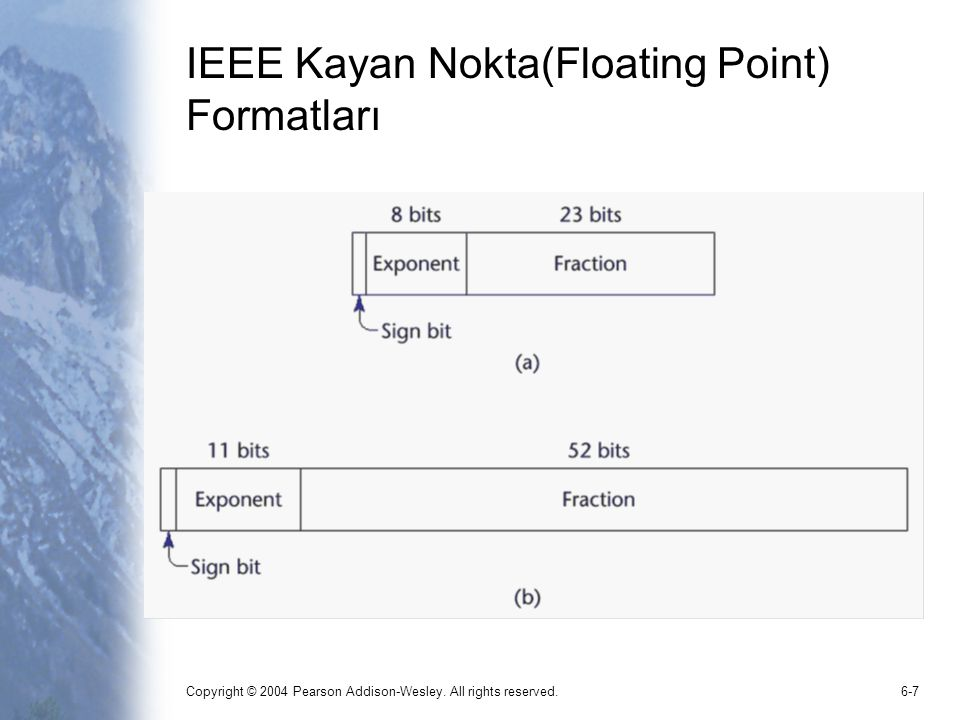 IEEE Kayan Nokta(Floating Point) Formatları
