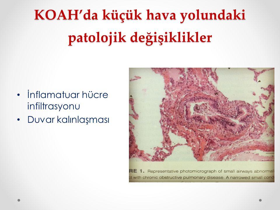 KOAH'da küçük hava yolundaki patolojik değişiklikler