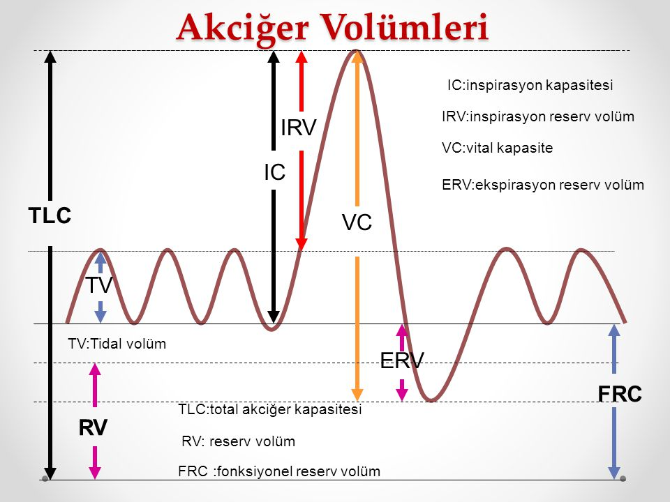 Akciğer Volümleri IRV IC TLC VC TV ERV FRC RV