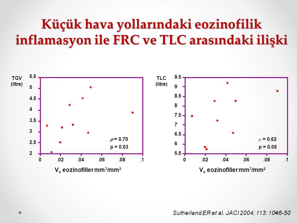 Küçük hava yollarındaki eozinofilik inflamasyon ile FRC ve TLC arasındaki ilişki