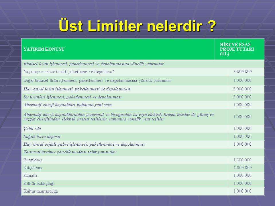 Üst Limitler nelerdir YATIRIM KONUSU HİBEYE ESAS PROJE TUTARI (TL)