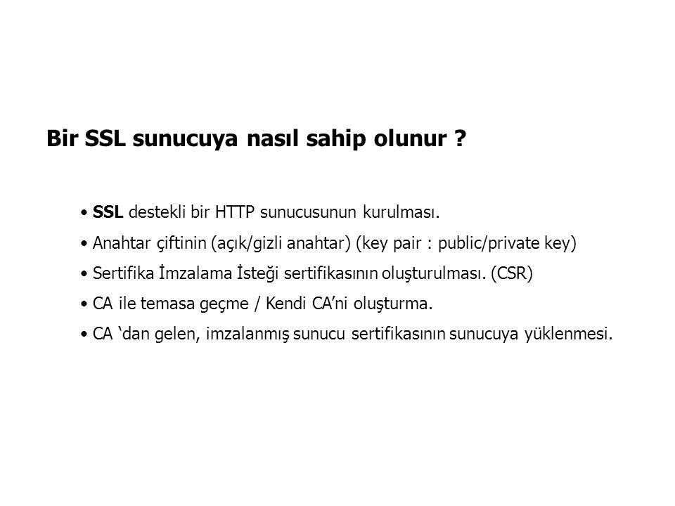 Bir SSL sunucuya nasıl sahip olunur