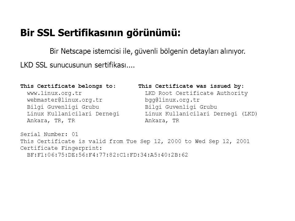 Bir SSL Sertifikasının görünümü: