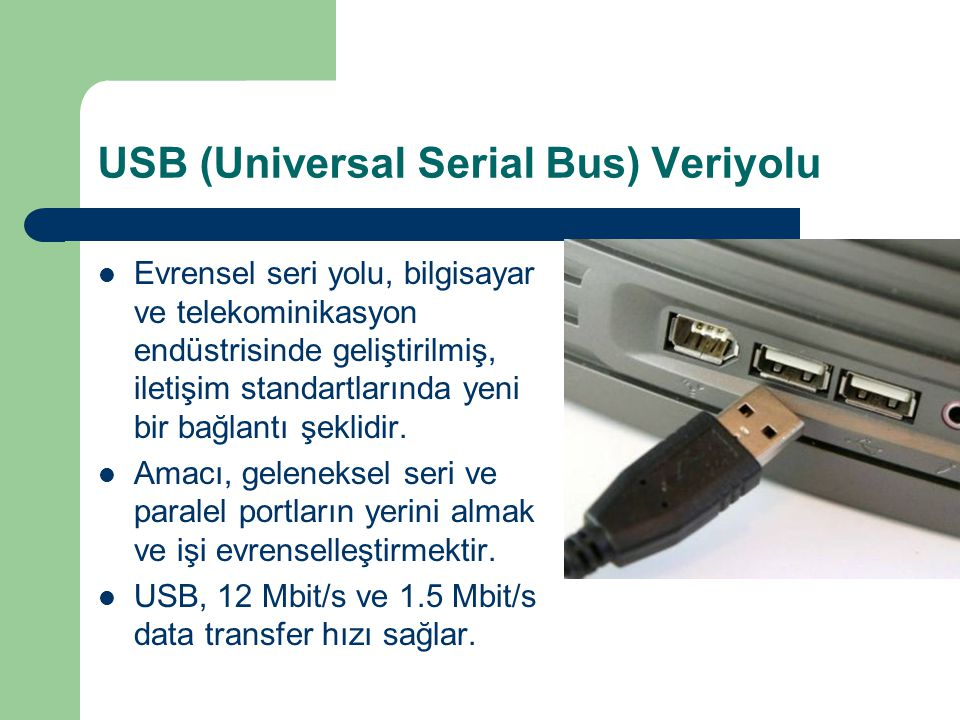 USB (Universal Serial Bus) Veriyolu