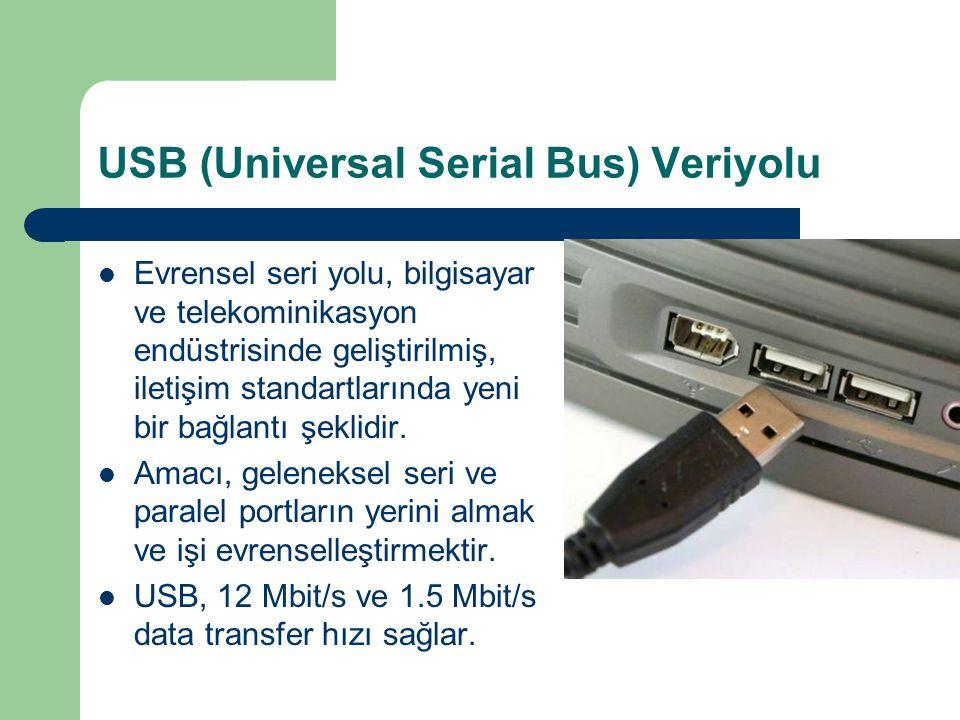 USB (Universal Serial Bus) Veriyolu