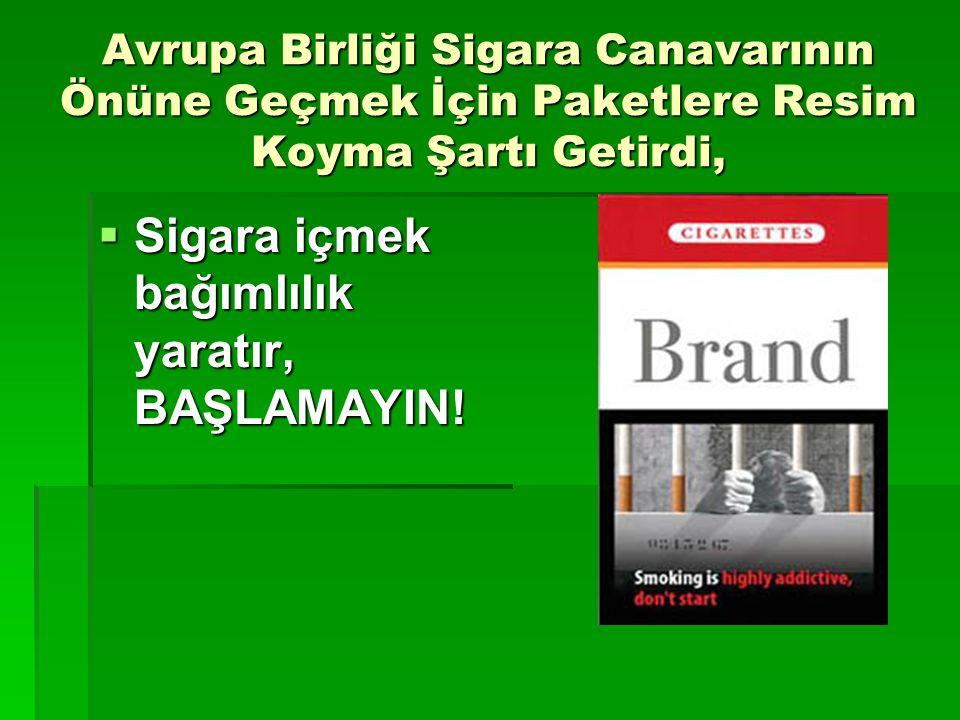 Sigara içmek bağımlılık yaratır, BAŞLAMAYIN!