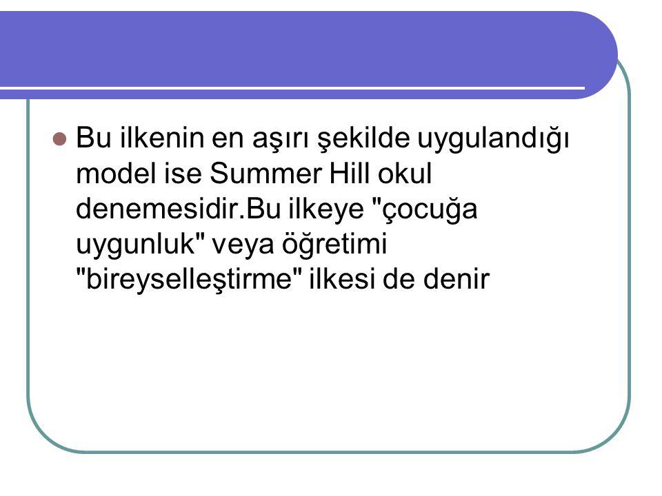 Bu ilkenin en aşırı şekilde uygulandığı model ise Summer Hill okul denemesidir.Bu ilkeye çocuğa uygunluk veya öğretimi bireyselleştirme ilkesi de denir