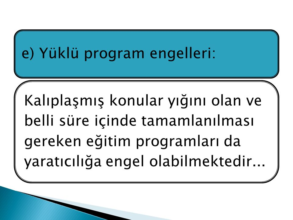 e) Yüklü program engelleri:
