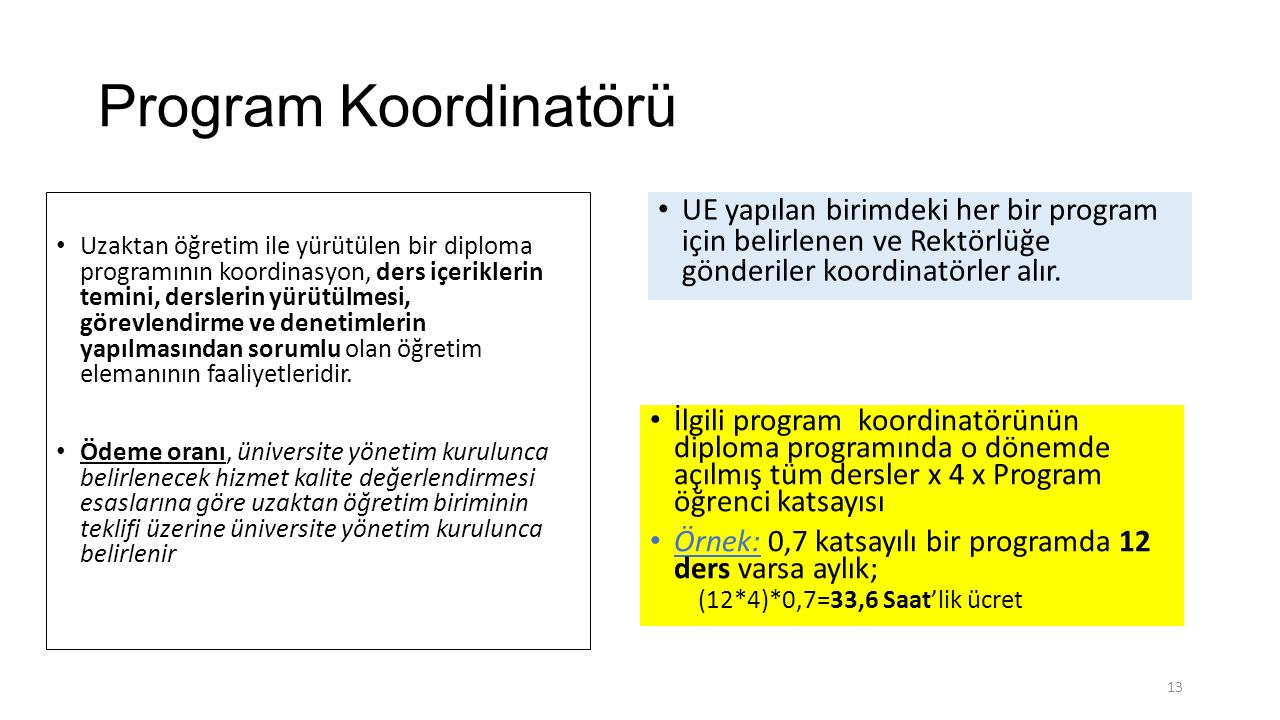Program Koordinatörü